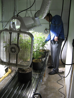 Paul Culkin created a small marijuana-growing operation in his garage in suburban Albuquerque, N.M.