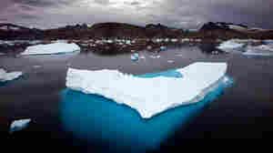 Icebergs float in a bay off Ammassalik Island, Greenland.