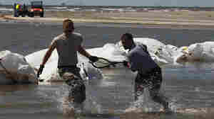Louisiana Sandbar Plan Worries Some Scientists
