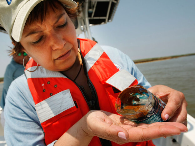 EPA Administrator Lisa Jackson looks at an oil sample she scooped from the water as she tours marshes affected by the Deepwater Horizon oil spill in Pass a Loutre, La.