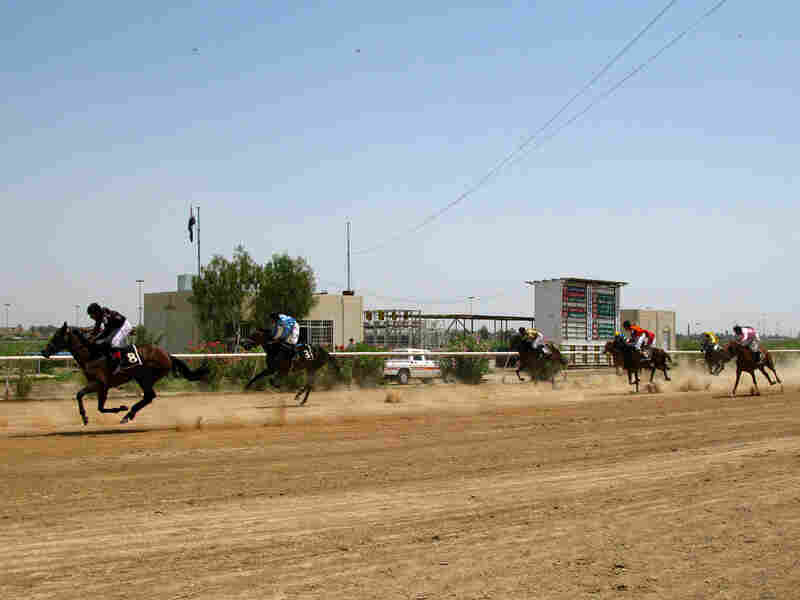 Horses near the finish at the Baghdad Equestrian Club.