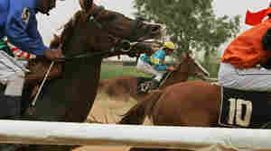 Iraqi jockeys battle during a race last year at the track in Baghdad.