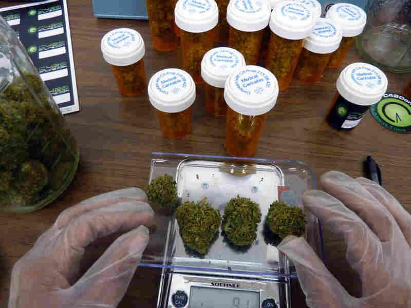 A worker at C420, an online dispensary, weighs four marijuana buds.