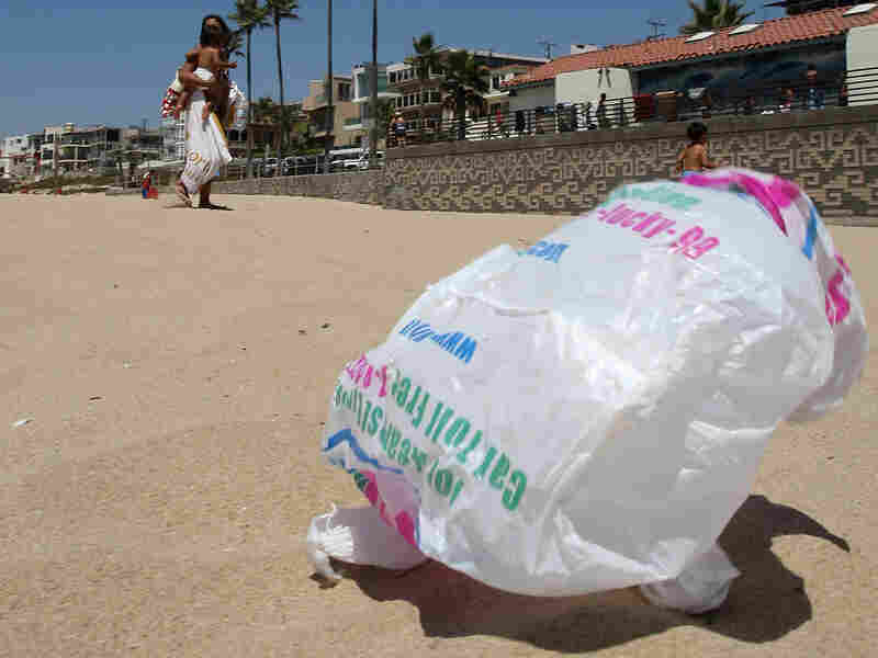 A bag blows across the sand near the Manhattan Beach (Calif.) Pier. Aug. 21, 2008.