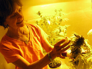 Ellen Lenox Smith tends her indoor marijuana garden.