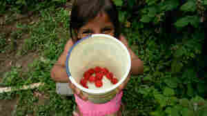 Annie shows off her rasberries.