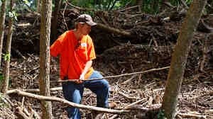 Carl Main of Caddo Gap, Ark., removes flood debris from a huge pile Sunday.
