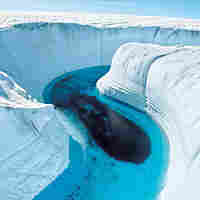 Extreme glacial melting in Greenland