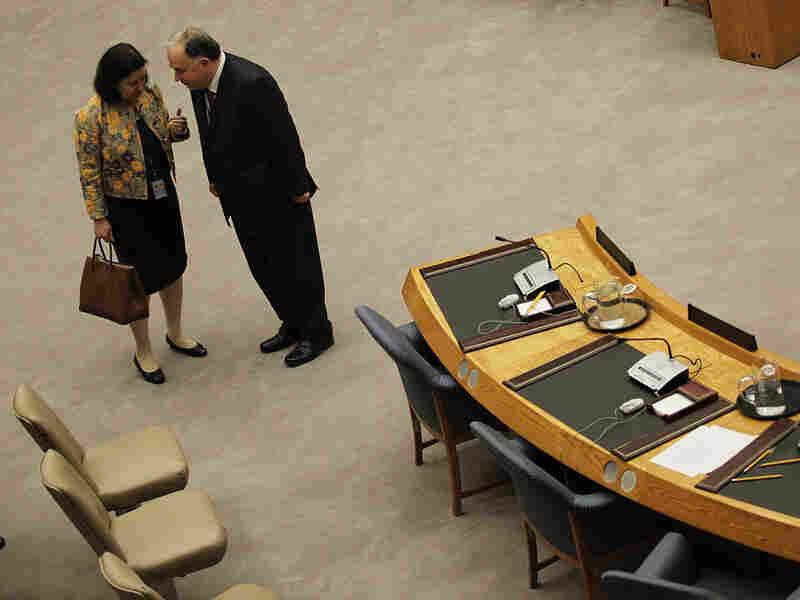 Brazil's U.N. Ambassador Maria Ribeiro Viotti (L) and Turkish Ambassador to the U.N. Ertugrul Apakan
