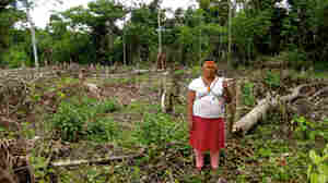 Toll Of Oil Drilling Felt In Peru's Amazon Basin