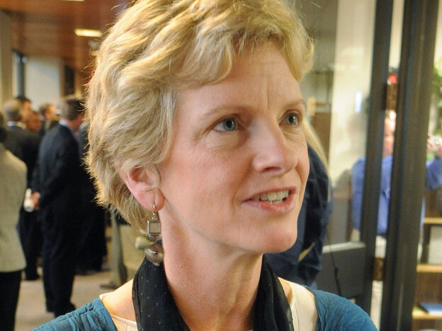 Missouri Secretary of State Robin Carnahan, shown talking with a reporter in Jefferson City, Mo., in February, is the leading Democrat in the race to replace retiring Sen. Kit Bond.