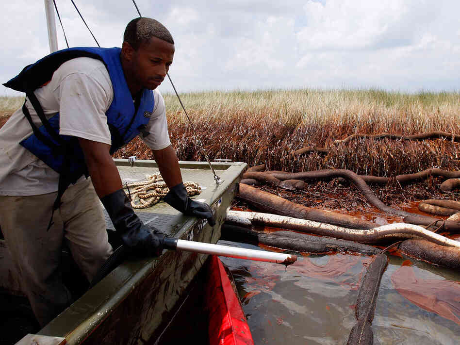 Gerald Ingraham looks out while vacuuming oil near oiled marsh grass in Barataria Bay.