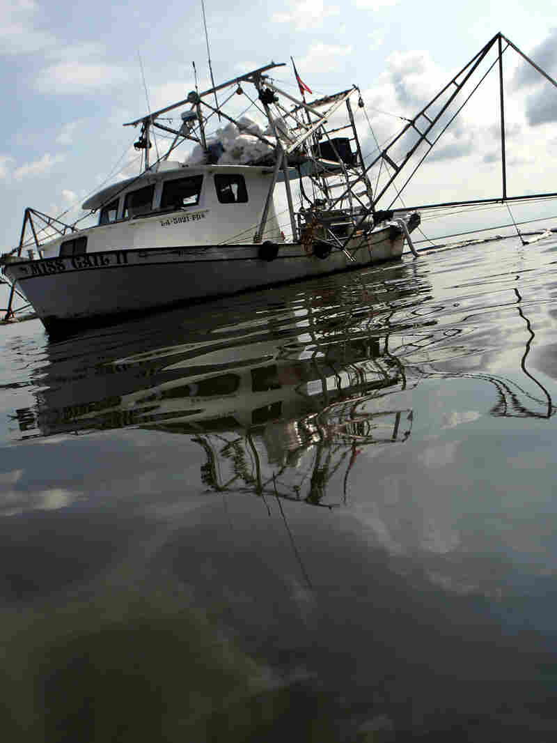 A shrimp boat skims for oil in Bay Jimmy, near Port Sulphur, La