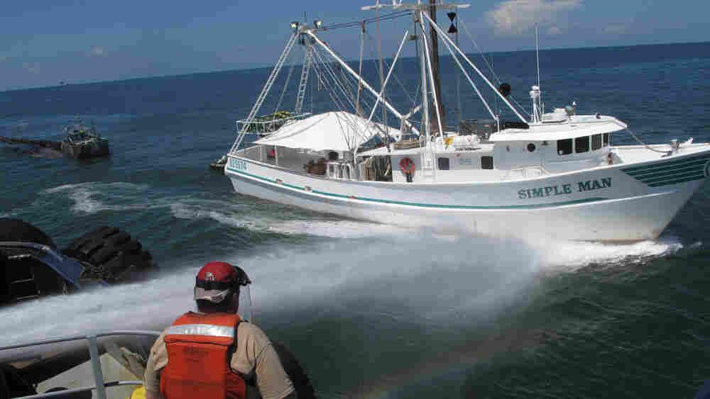 A shrimp-trawler gets a high-powered spray wash. Debbie Elliot/NPR