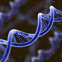 Scientists found a set of genetic markers that can predict whether someone will live to be 100.