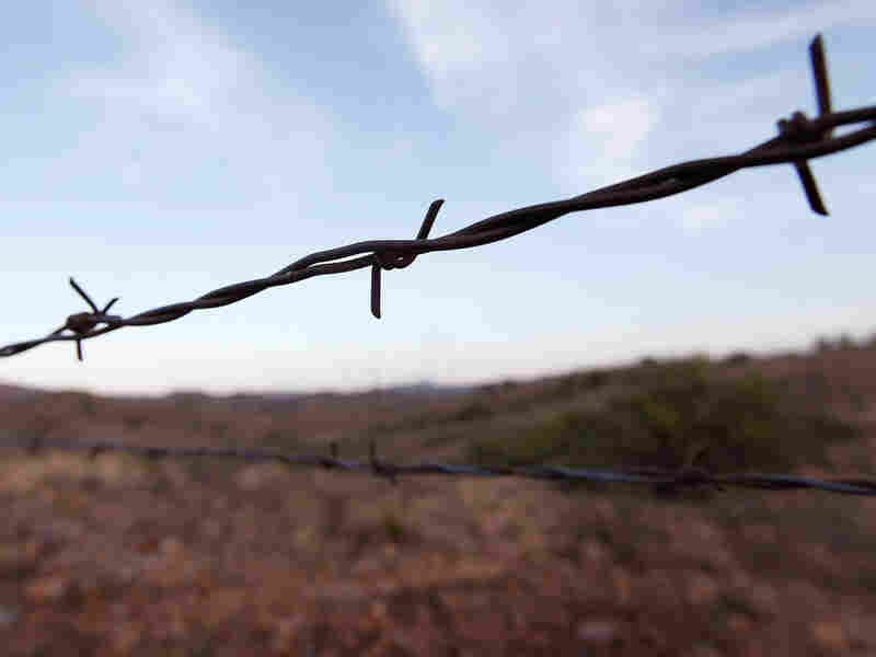 Barbed wire along the U.S.-Mexico border near Sasabe, Ariz.