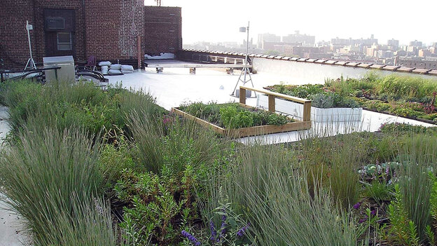 """This """"cool"""" roof was installed by Sustainable South Bronx in 2005."""