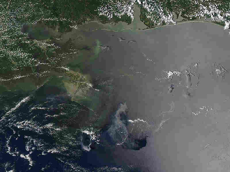 A satellite image shows the oil that has permeated the Gulf of Mexico.
