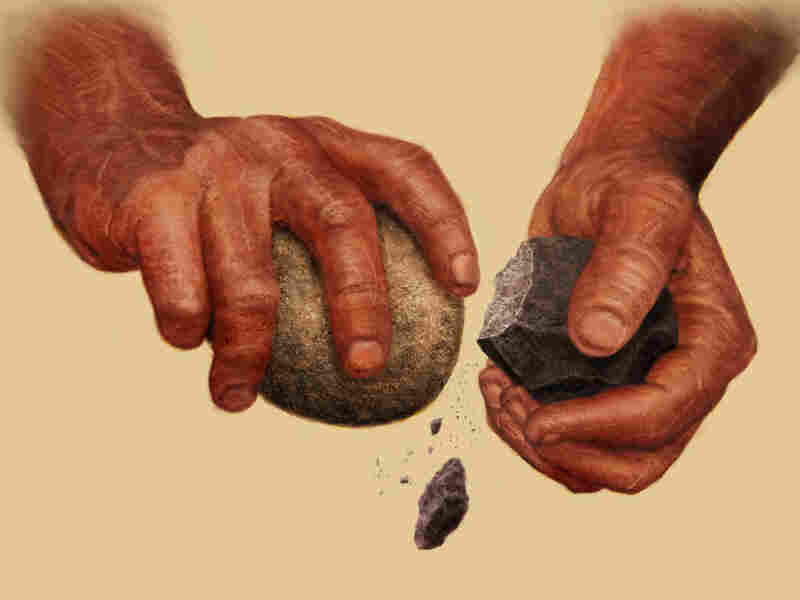 Hands striking rocks to make stone tools.