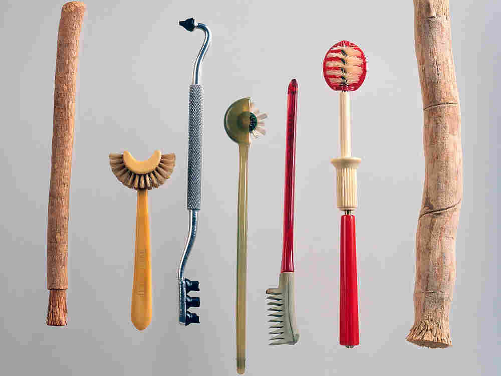 Historic toothbrushes: siwak stick; Taub's patent toothbrush; gum stimulator; Strockway rotary; Dr. Mayland's.