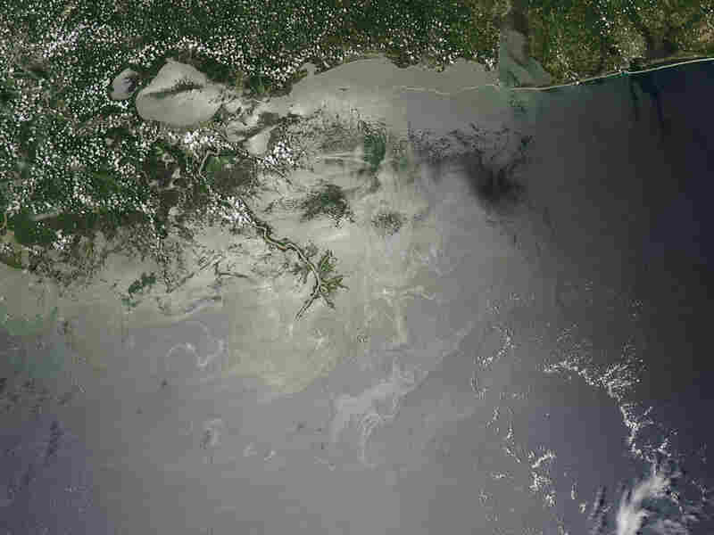 In this July 28, satellite image provided by NASA, oil is visibile on the surface of the Gulf.