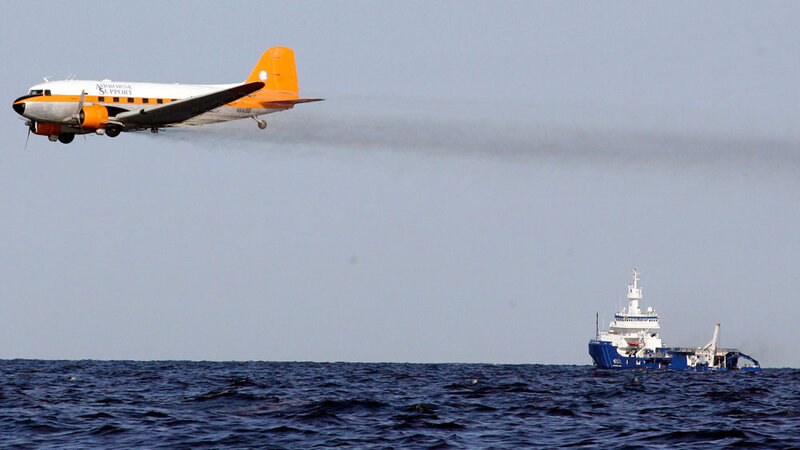 The Serious And Long Lasting Impact Of >> Scientists Tell Senate The Long Term Effects Of Oil Dispersants Are