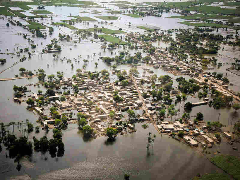 Houses in Mithan Kot, Pakistan, are half submerged in flood waters.