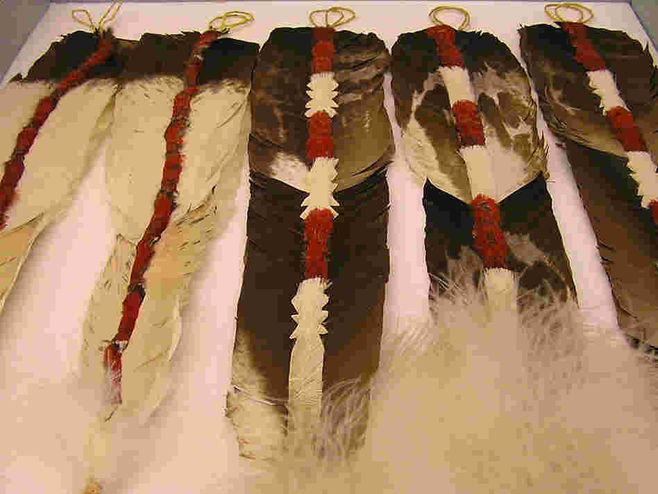 Condor feathers are ornately decorated for the Yurok tribe's jump dance.