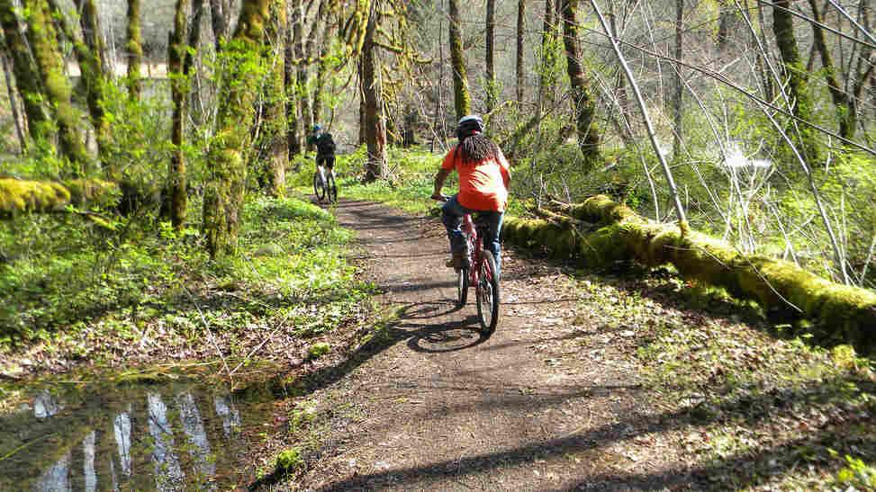 Mountain bikers on a trail in Oakridge, Ore.