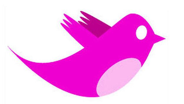 Pink Twitter bird; Mito Habe-Evans / NPR
