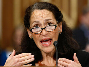 Food and Drug Administration chief Margaret Hamburg
