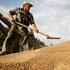 A Russian man shovels grain
