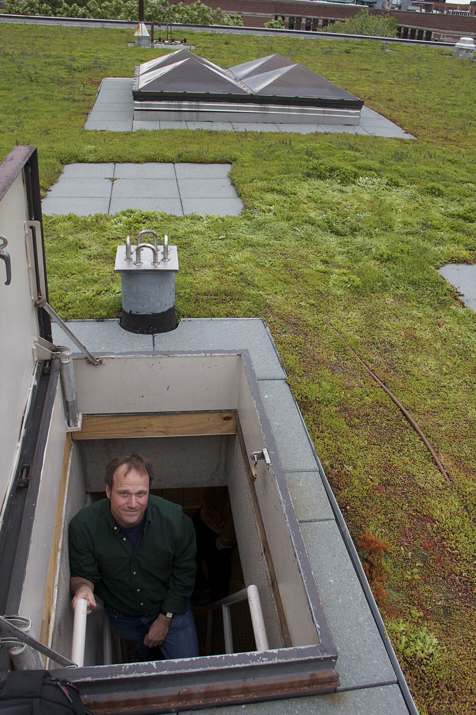 Andy Hoffman, Holcim professor of sustainable enterprise at the University of Michigan, peers out of a trapdoor in a  green roof. Hoffman teaches a course in green construction.