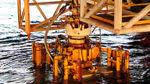 The damaged blowout preventer and the Lower Marine Riser Package cap from the Deepwater Horizon rig