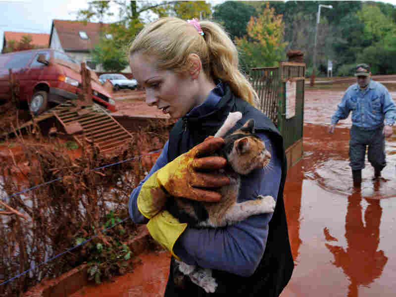 Tunde Erdelyi saves her cat from the toxic sludge.