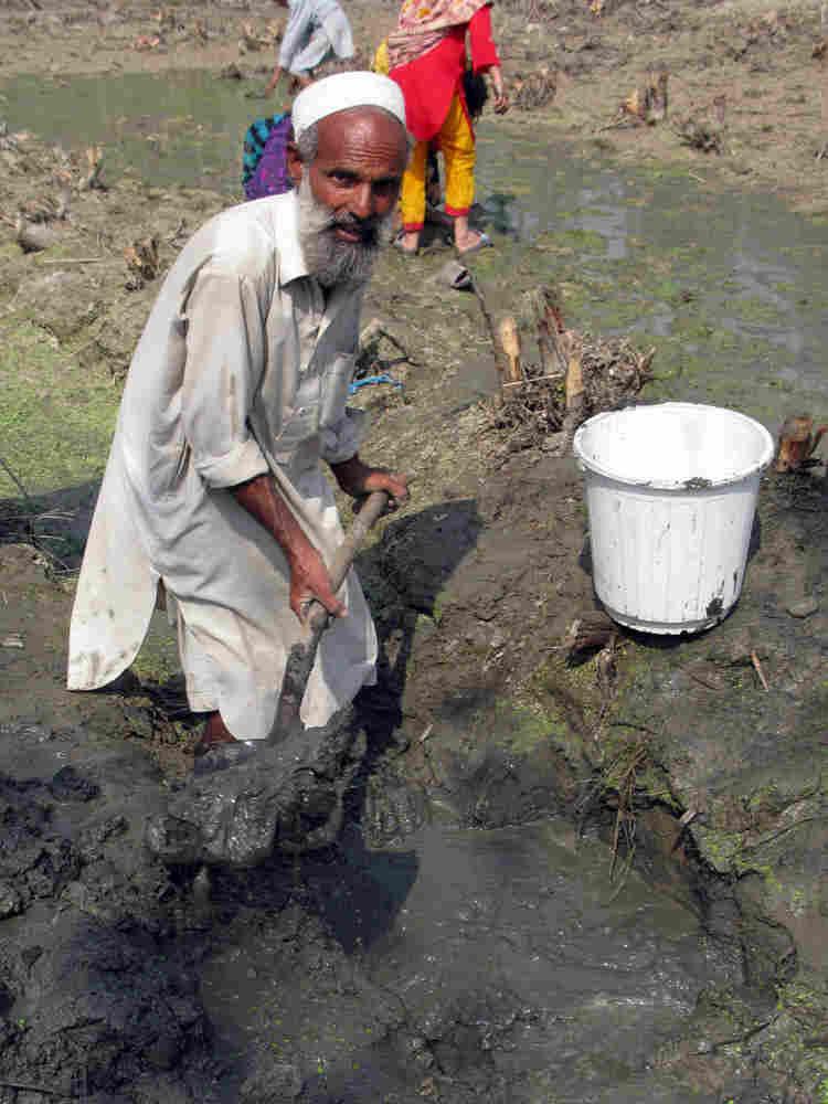 Qismat Ali, 50, of Charsadda district in Pakistan