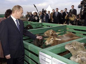Then-Russian President Vladimir Putin visits farm outside Saratov in 2004
