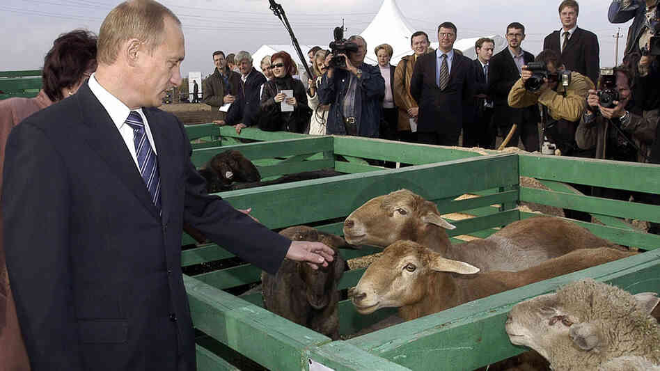 Then-Russian President Vladimir Putin visits farm outside Saratov in 2004