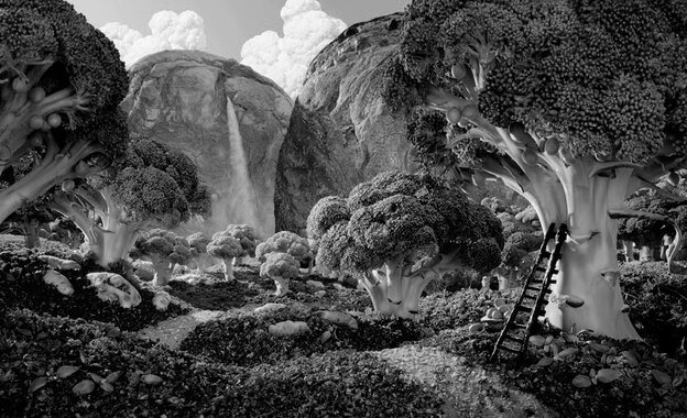 Broccoli Forest desaturated