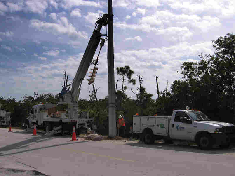 A work crew installs a concrete power pole on the island.