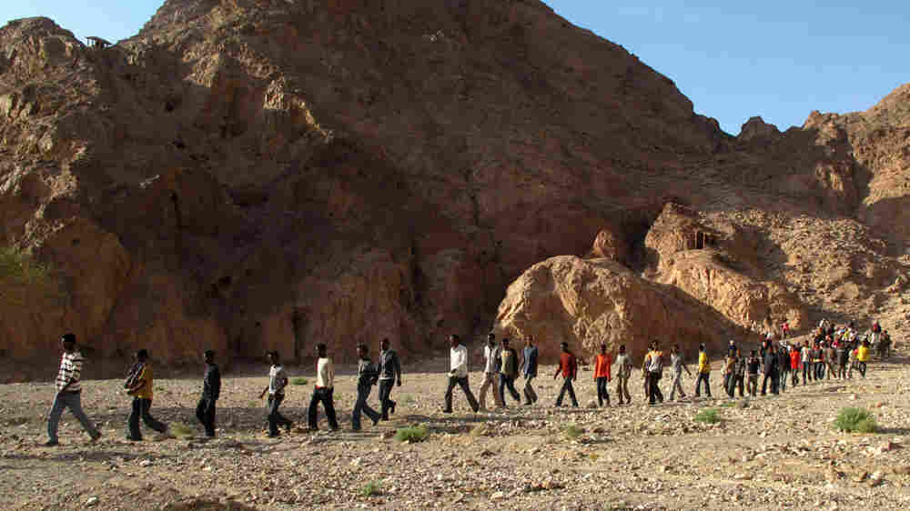 Dozens of African migrants cross into southern Israel through the border with Egypt