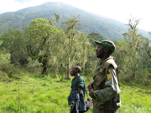 Jean Bosco Bizimuremyi (right) navigates through the forest near volcano Visoke.