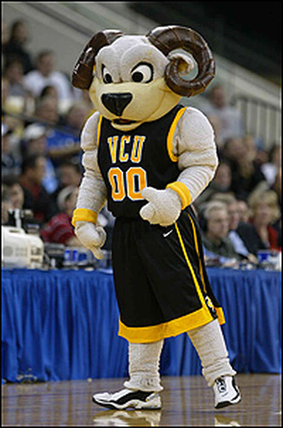 The VCU mascot, a student in a large ram costume.