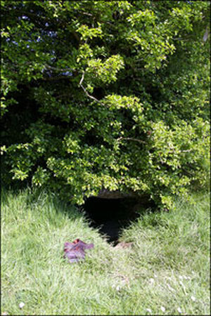 """The entrance to Ireland's """"Gates of Hell."""""""