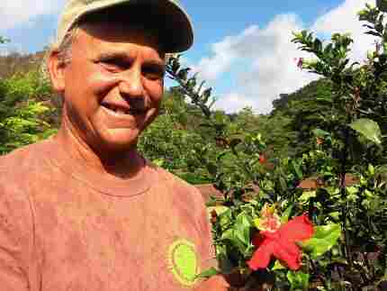Steve Perlman with hibiscus he found in wild
