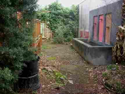 garden disaster