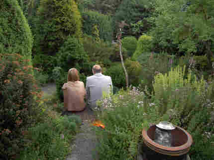 couple at twilight in conifer garden