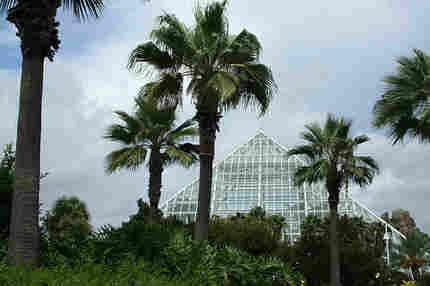 the pyramids at Moody Gardens