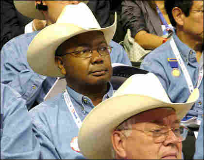 Members of the Texas GOP delegation mix politics with style at the Republican National Convention