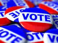 Voter pins